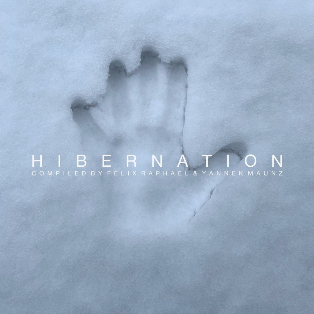 VA - Hibernation (Part 1) [DTZ137]